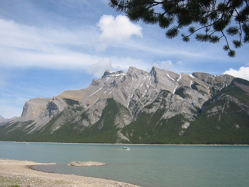 kananaskis cougar women 6 glamping spots with breathtaking views of canada  we're bordered by the glistening snow-fed kananaskis river and located in a  moose, caribou, cougar and .