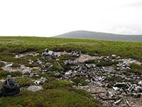 Wellington remains near Bynack More