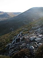 Wellington wreckage on Carn Aosda