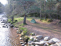 Campsite in Rothiermurchus forest next to the Cairngorm Club footbridge over the Am Beanaidh river 